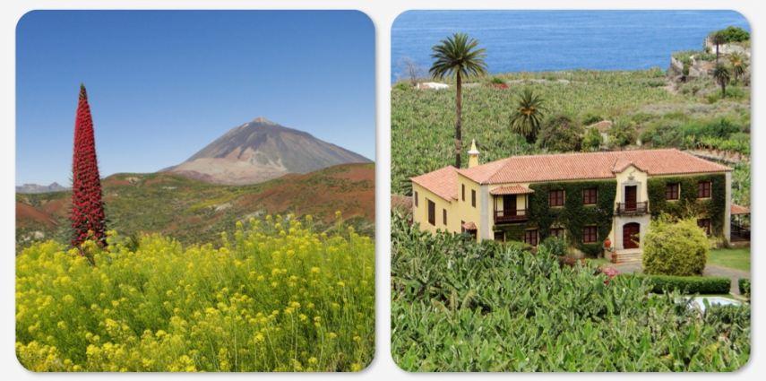 Además de sol y playa, en Canarias puedes encontrar cultura, parques nacionales, arquitectura y gastronomía que te sorprenderán.